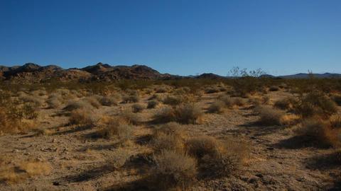 DesertFloor1 Stock Video Footage