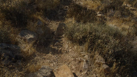 DesertFloor3 Footage