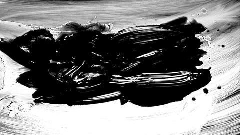 1280x1080dvpro Ink Paint Mtn8 Stock Video Footage