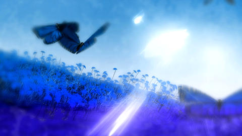 HD Blue Purp Butterfly Land PJPEG Animation