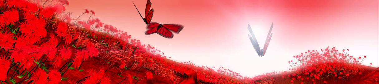 Butterfly Landscape Animation