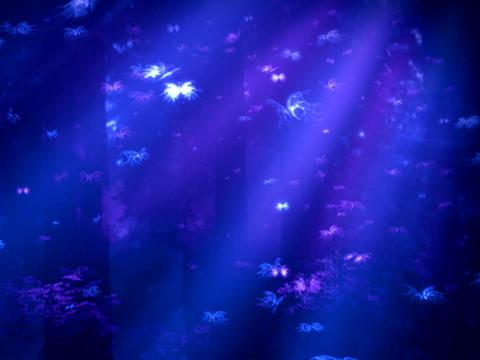 Blue Purple BFLY Stock Video Footage