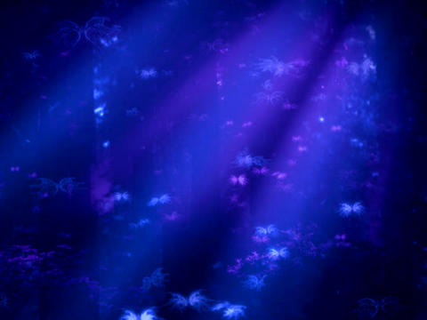 Blue Purple BFLY Stock Video Footage