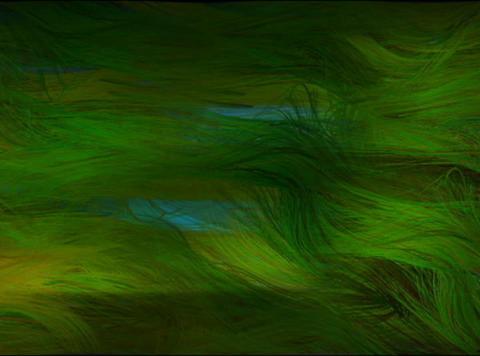 Ocean grass2(L) Stock Video Footage