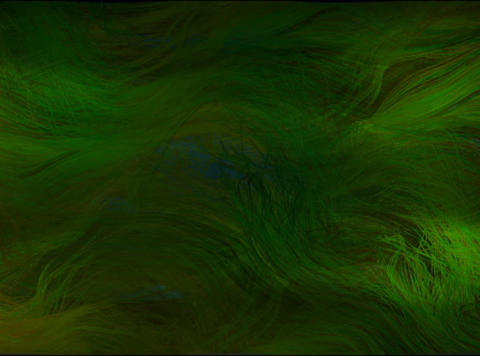 Ocean grass2(L) Animation