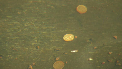 The coin under water Stock Video Footage
