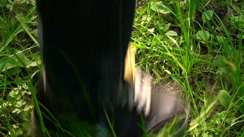 The foot is on a flower Stock Video Footage