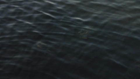 Detail of the bow of a fishing boat Stock Video Footage