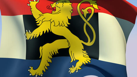 Flag of Benelux Stock Video Footage