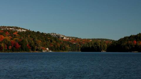 Foliage landscape with lake Footage