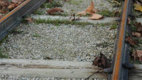 Miniature train track Stock Video Footage