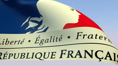 Flag of France Goverment Stock Video Footage