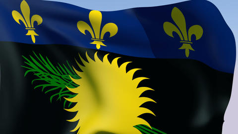 Flag of Guadeloupe (unofficial) Stock Video Footage