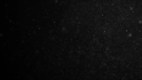 Beautiful Floating Organic Dust Particles on Black Background in Slow Motion. Animation