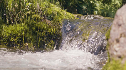 Water river flowing in forest. Beautiful scenery river stream in mountains Footage
