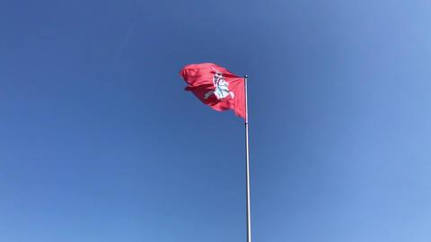 Lithuanin flag Vytis (0 20 Slow-Mo) ビデオ