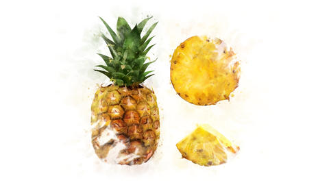 Pineapple Illustration for the overlay Animation