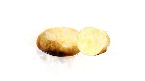 Potato on a transparent background Animation