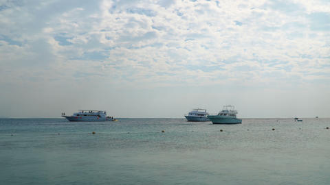 Safari Boats at anchor in the Red Sea Footage