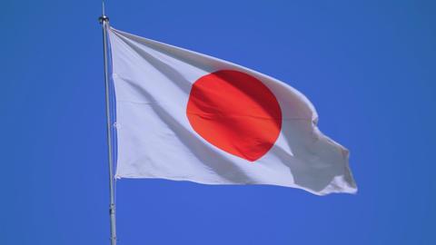 Japan national flag fluttering in the wind ビデオ