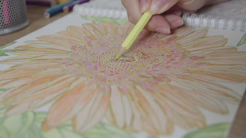Color video of a woman hand holding a pencil drawing and coloring coloring book Live Action