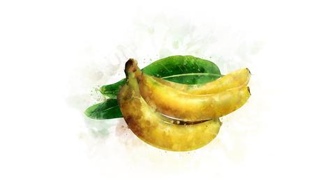 The Banana illustration appearance Animation