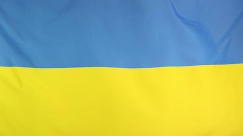 Moving national flag of Ukraine Footage