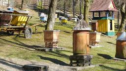Bee garden. Old historic beehive Live Action