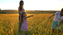 Asian mother with children are walking in field in summer, kids are fighting Footage