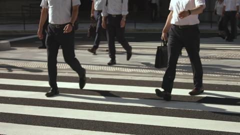 Slowmotion - Commuters People Crosswalks Summer Tokyo Live Action