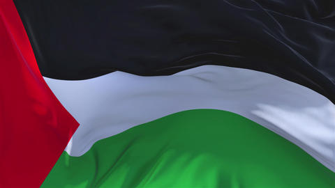 98. Palestine Flag Waving in Wind Continuous Seamless Loop Background Footage