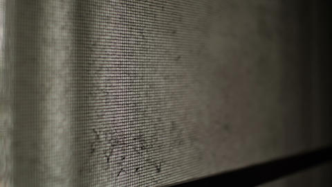 Old mosquito wire screen in abandoned house Footage