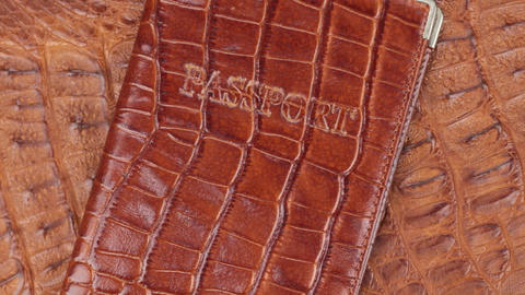 Rotation, close-up brown cover for passport, lying on brown crocodile skin Live Action