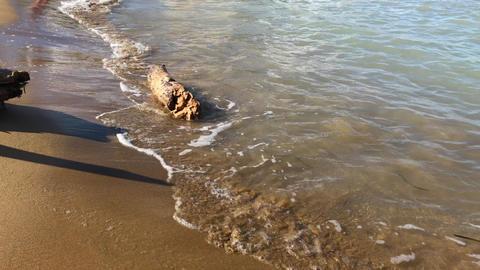 Drift peace of wood in sea waves near stones on sand beach Footage