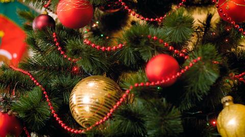 Closeup footage of Christmas lights glowing on Christmas tree at living room Footage