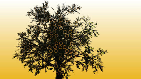 Mixed media of two 3d animation from tree and Technology Interface Computer Data Animation