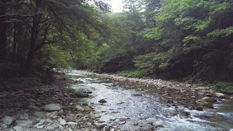 Stream of mountain river flowing on stones in summer forest aerial view ビデオ
