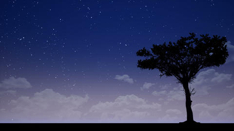 Tree Silhouette at Night CG動画素材