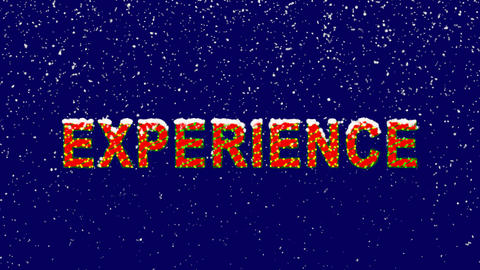 New Year text text EXPERIENCE. Snow falls. Christmas mood, looped video. Alpha Animation