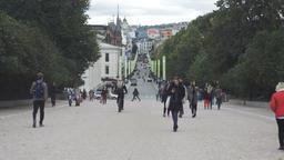 Karl Johans Gate Street, Oslo, Norway, Street Scene Footage