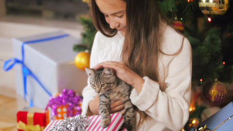 Portrait of beautiful smiling young woman caressing little kitten under Footage
