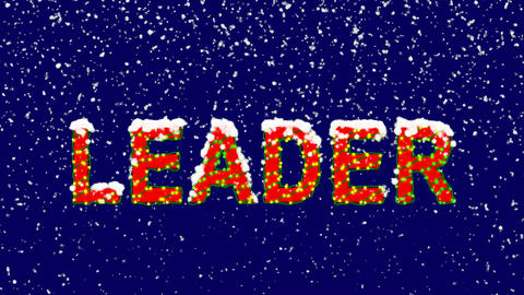 New Year text text LEADER. Snow falls. Christmas mood, looped video. Alpha Animation