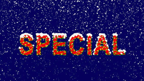 New Year text text SPECIAL. Snow falls. Christmas mood, looped video. Alpha Animation