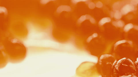 Red fish embryos in the delicacy fresh red caviar. Macro view Live Action