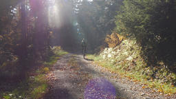 Nature Trail in Autumn and Bicycle Rider Footage