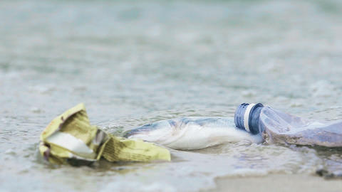 Disgusting rubbish, litter rotting on contaminated seashore, pollution problem Live Action