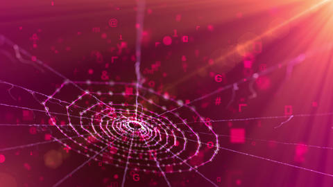 Spider Web in the Purple Background Animation