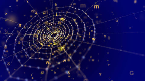 Spider Web in the Blue Cyberspace Animation