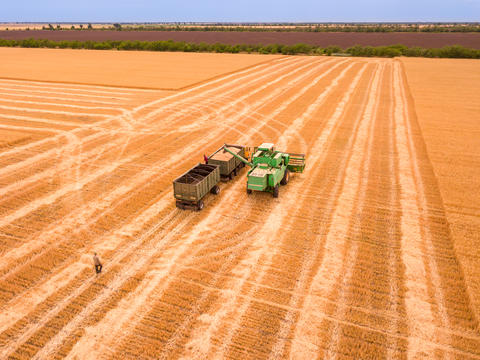 Harvester Unloads the Crop into a Truck. Aerial View フォト