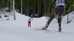 group of athletes skiers down mountain in forest Footage